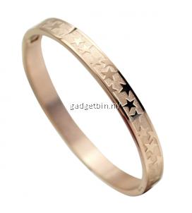 Product details of YOUNIQ Stary Night 18K Rosegold Titanium Bangle